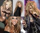 Kesha es una cantante y compositora americana.