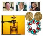 Premio Nobel de Química 2010 - Richard Heck, Eiichi Negishi y Akira Suzuki -