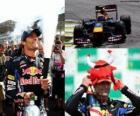 Mark Webber - Red Bull - Interlagos, Gran premio de Brasil 2010 (2º Clasificado)