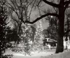 Navidad en el parque