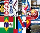 Copa Mundial de Clubes de la FIFA EAU 2010