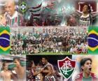 Fluminense Football Club Campeón del Campeonato Brasileño 2010