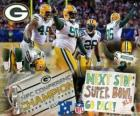 Green Bay Packers campeón de la NFC 2010-11