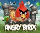 Angry Birds es un videojuego de Rovio. Los pájaros furiosos atacan a los cerdos que roban huevos
