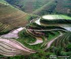 Paisaje de la China rural