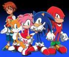 Sonic y otros personajes de los vídeojuegos de Sonic