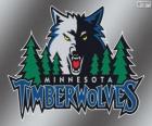 Logo de Minnesota Timberwolves, equipo de la NBA. División Noroeste, Conferencia Oeste