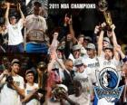 Campeones NBA 2011 Dallas Mavericks