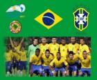 Selección de Brasil, Grupo B, Argentina 2011