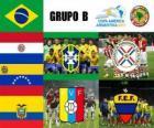 Grupo B, Argentina 2011