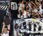 Santos FC campeón Copa Libertadores 2011