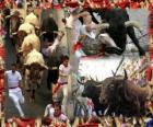 Encierros de los Sanfermines. Pamplona, Navarra, España. Fiestas de San Fermín del 6 a 14 de julio