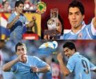 Luis Suárez mejor jugador de la Copa América 2011