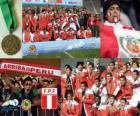 Perú, 3er clasificado Copa América 2011