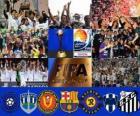 Copa Mundial de Clubes de la FIFA Japón 2011