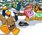 Grupo de pingüinos pasando el día al aire libre disfrutando de la nieve