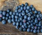 Arándanos, frutos del arándano o bayas