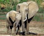 Mamá elefante controlando a su pequeño con la ayuda de la trompa