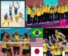 Voleibol femenino LDN 2012
