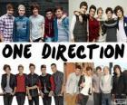 Los 5 miembreos del grupo, One Direction