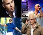Pitbull (Armando Christian Pérez), es un productor musical de ascendencia cubana