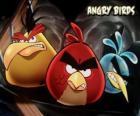 Otros tres pájaros del videojuego de los Pájaros Furiosos, Angry Birds