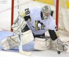 Guardameta o portero de hockey sobre hielo