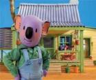 Frank es uno de los hermanos koala australianos