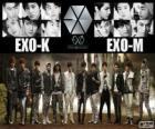 EXO es un grupo de pop chino-surcoreano
