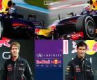 Infiniti Red Bull Racing 2013