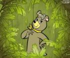 La preciosa osa Cindy es la novia del oso Yogui