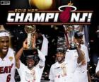 Miami Heat Campeón 2013 NBA