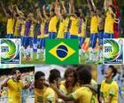 Brasil Copa FIFA Confederaciones 2013