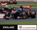 Daniel Ricciardo - Toro Rosso - Silverstone, 2013