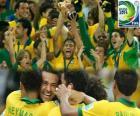 Brasil, Campeón de la Copa FIFA Confederaciones 2013
