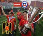 Unión Española, campeón del Torneo de Transición 2013, Chile