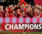 Bayern de Munich, Campeón Mundial de Clubes 2013