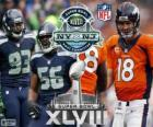 Super Bowl 2014. Seattle Seahawks vs Denver Broncos. MetLife Stadium, Nueva Jersey, 2 de febrero de 2014