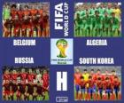 Grupo H, Brasil 2014