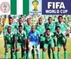 Selección de Nigeria, Grupo F, Brasil 2014