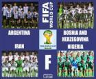 Grupo F, Brasil 2014