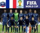 Selección de Francia, Grupo E, Brasil 2014