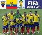 Selección de Ecuador, Grupo E, Brasil 2014