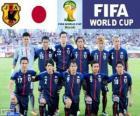 Selección de Japón, Grupo C, Brasil 2014