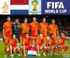 Selección de Países Bajos, Grupo B, Brasil 2014