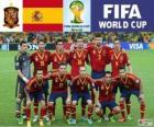 Selección de España, Grupo B, Brasil 2014