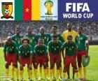 Selección de Camerún, Grupo A, Brasil 2014