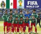Selección de México, Grupo A, Brasil 2014