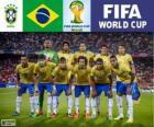 Selección de Brasil, Grupo A, Brasil 2014