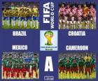 Grupo A, Brasil 2014